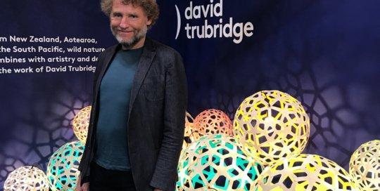 Nicola Manning Design Interior Design Trends New York ICFF 2017 David Trubridge Lights